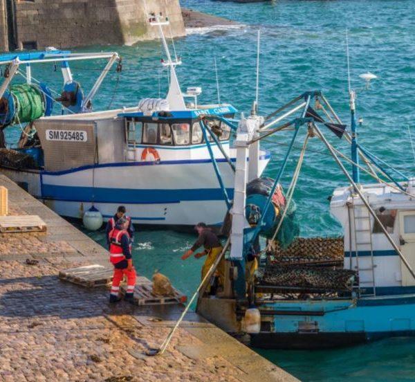 Pêcheurs en danger : Edeis lance un appel aux supermarchés et hypermarchés